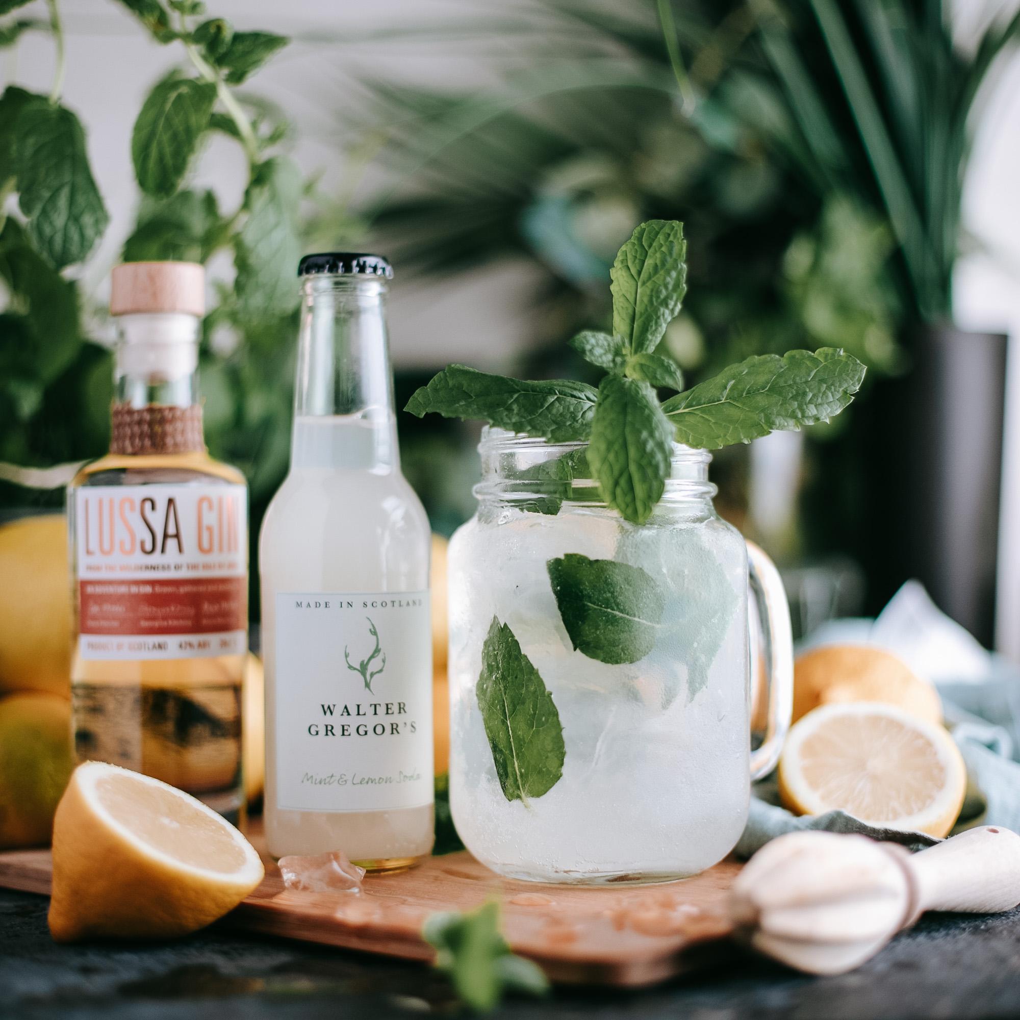 Mint Lemon Soda Lussa Gin